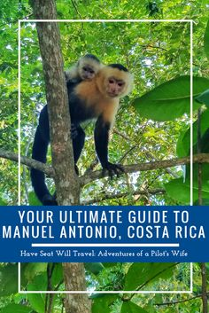 Your Ultimate Guide to Manuel Antonio, Costa Rica - Have Seat Will Travel