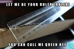 let me be your ruler, ruler