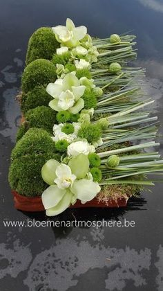 Risultati immagini per aspidistrablad vouwen Deco Floral, Arte Floral, Modern Floral Arrangements, Flower Arrangements, Flower Centerpieces, Flower Decorations, Art Mural Floral, Grave Decorations, Home Flowers