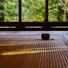 japan zen moment / momento zen japonês