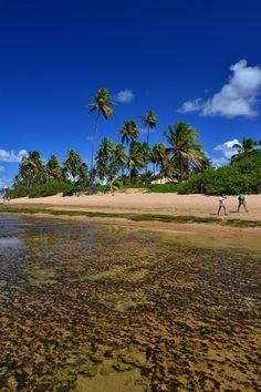 Praia do Forte, Mata de São João, Bahia, Brazil