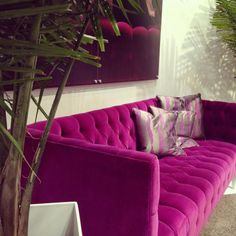 OMG! The only pink I like, cerise. And it's a velvet couch...