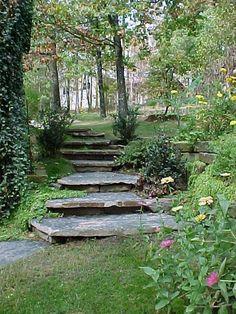 Gardens & Water Features  