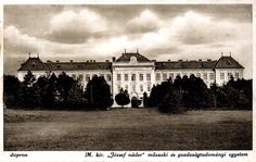 egyetem_1921.jpg
