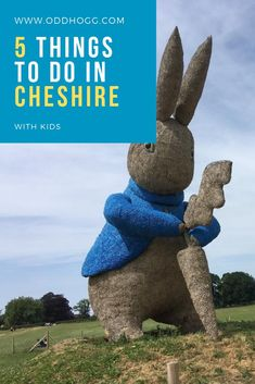 Things To Do In Cheshire - Ideas for days out with the kids. WHere to eat, what to do on a rainy day and where to go when you want to be outside in Cheshire Days Out With Kids, Family Days Out, Travel With Kids, Family Travel, Thing 1, Day Trips, Weekend Trips, Dog Friends, Where To Go