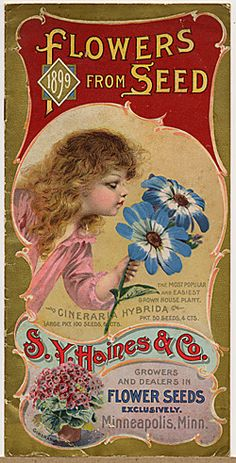 Visit the board 'Vintage seed packages' by Rusty Tricycle: http://pinterest.com/greenthumb2001/vintage-seed-packages/