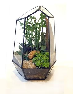 The Rune Terrarium Is A Beautiful Soldered Glass Terrarium Filled With The  Finest Greenhouse Succulents (chosen From A Family Owned Local Nursery).