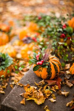 Winter is an etching, spring a watercolor, summer an oil painting and autumn a mosaic of them all. ~Stanley Horowitz