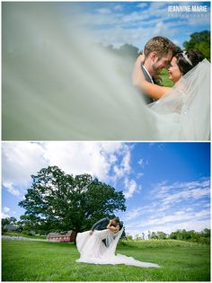 Wedding portraits at Morgan Creek Vineyard in New Ulm, MN. Photos by Minnesota wedding photographer Jeannine Marie Photography. #morgancreekvineyard #vineyardwedding #outdoorwedding #bride #groom #weddingportraits #saintpaulweddingphotographer #Minnesotaweddingphotographer #jeanninemariephotography