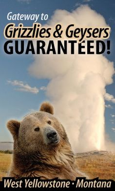 West Yellowstone — Grizzlies & Geysers Guaranteed!
