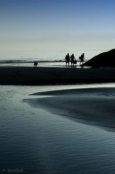 Praia da Cassandoca, Ubatuba