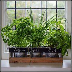 Herb Garden Planter, Herb Garden Kit, Herb Garden In Kitchen, Herb Garden Design, Kitchen Herbs, Herb Planters, Easy Garden, Garden Ideas, Kitchen Kit