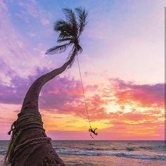Who wants to swing like Tarzan @ Dalawella beach - Sri Lanka https://www.srilankatravelandtourism.com/places-sri-lanka/unawatuna/unawatuna.php . Sri Lanka Travel Tour Operator. Explore Sri Lanka with Us. Mobile-WhatsApp-Viber 94 777854022 . Photo by @jordhammond . #srilanka_travel #srilanka#colombo #qatar#saudi#ksa#kuwait#oman #bharain#traintours #unawatuna #train #germany#ksa#arab#arabia#sunset #qutarairways#sunrise #czech#nature #ella#lithuania#bestdestinations #italy #backpacker #mist…