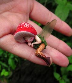 Gardening Autumn - Minuscule dormir forêt fée champignon par Celia par scarletsbones - With the arrival of rains and falling temperatures autumn is a perfect opportunity to make new plantations Clay Projects, Clay Crafts, Diy And Crafts, Clay Fairies, Fairy Pictures, Baby Fairy, Forest Fairy, Fairy Art, Fairy Dolls