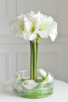 White Amarylis arrangement | Floral New York Artificial Flower