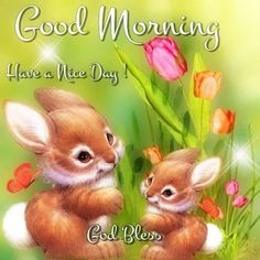 Good Morning Bunnies Pictures, Photos, and Images for Facebook, Tumblr, Pinterest, and Twitter
