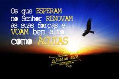 Mas os que esperam no Senhor renovarão as forças, subirão com asas como águias; correrão, e não se cansarão; caminharão, e não se fatigarão.Isaías 40:31