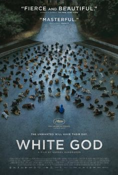 """White God (2014): A """"radical"""" movie about humans and dogs, says movie critic Manohla Dargis. Wherein lies the """"radicalness""""?--the dogs are not digital dogs or Disneyesque or anthropomorphic. The main dog, Hagen, """"asserts he doesn't need to be like a person for you to be on his side. He is a dog, and that's all he needs to be."""""""
