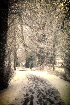 Snow print, Tree print, Winter photography, Winter print, Snow decor, snow photography, snow art, tree photo, landscape print, landscape art - pinned by pin4etsy.com