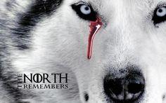Game of Thrones Red Wedding ... shocking!