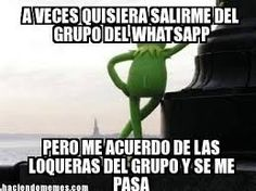 Resultado de imagen para memes sobre grupos de whatsapp