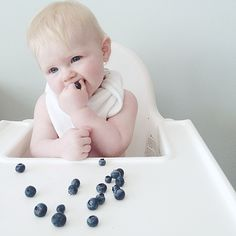 BC Blueberries & 'the must have multi-use bib' #supersoft #organicbamboo #numpfer