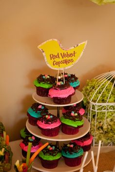 Bird themed baby shower cupcakes photographed by Karen Feder Photography