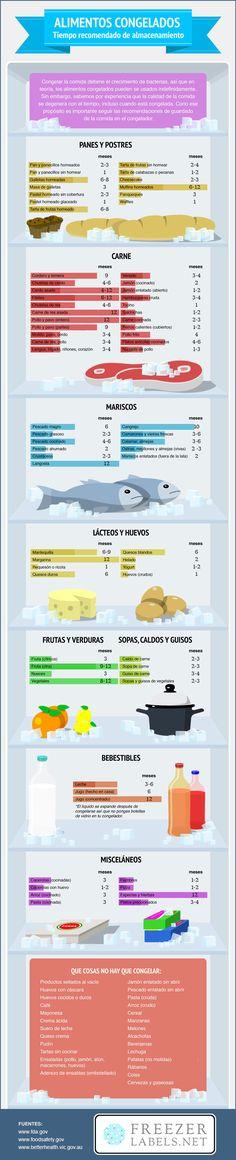 ¿Por cuánto tiempo puedes congelar los alimentos? Ahora lo sabrás   Upsocl