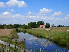 NP de Alde Feanen. Friesland. Nederland