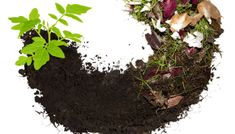 Compost biodegradable waste food-waste recycling heap of vegetables - Modern Biodegradable Products, Organic Gardening, Gardening Tips, Gardening Vegetables, Food Waste Recycling, Faire Son Compost, Composting 101, Soil Improvement, Compost