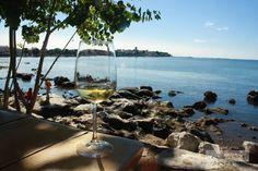 Restaurant mit Aussicht: Besser als im Konoba geht's nicht. Dubrovnik, Alcoholic Drinks, Restaurant, Wine, Vacation, Beach, Travel, Outdoor, Porec Croatia