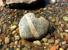 We ALWAYS pick up heart rocks we find in nature and give them to each other. (Stone Heart by ann j p, via Flickr)
