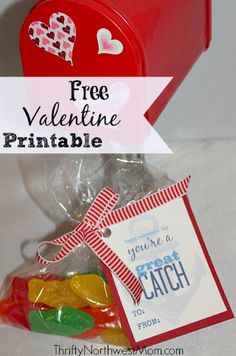 Free Valentine Card Printable You're a Great Catch