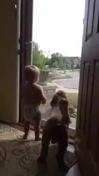 Cute Overload: Internet`s best cute dogs and cute cats are here. Aww pics and adorable animals. Funny Animal Videos, Cute Funny Animals, Funny Animal Pictures, Cute Baby Animals, Animal Memes, Funny Cute, Animal Pics, Funniest Animals, Dog Videos