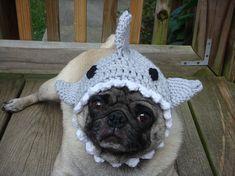 Shark fin dog hat