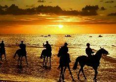 Sanlúcar de Barrameda, CÁDIZ Camel, Spanish, Celestial, Sunset, Animals, Outdoor, Horse Racing, Monuments, Antigua