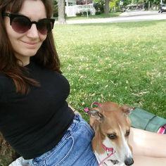 Sylvie's favourite seat.  #selfie #iggy #ig #italiangreyhound #instapuppy #dogsofinstagram #dogs #petowner #parklife #toronto #springinthecity #sylvietheiggy