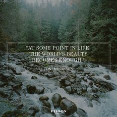 """at some point in life, the world's beauty becomes enough"" - toni morrison."