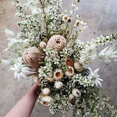 One of our all time favourite bridal bouquets using all Australian native flowers. A mix of dried and fresh florals using soft creams and white. Succulent Bouquet, Dried Flower Bouquet, Flower Bouquet Wedding, Dried Flowers, Floral Wedding, Australian Wildflowers, Australian Native Flowers, Bride Bouquets, Bridesmaid Bouquet