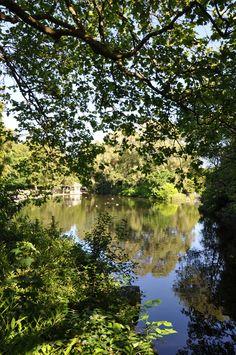 Saint Stephen, Dublin City, Basin, Sunny Days, Parks, Ireland, Lord, River, Green