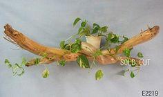 流木のオブジェを置くだけで、オシャレ空間の誕生です。
