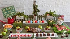 [Inspiration] Insect Themed Dessert Table