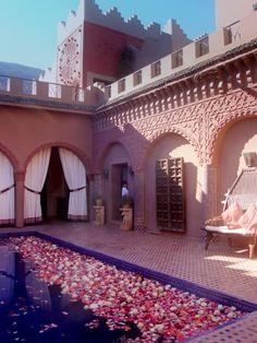 Un grupo de rosas de Marruecos - Visita de la Experiencia del Desierto de Marruecos