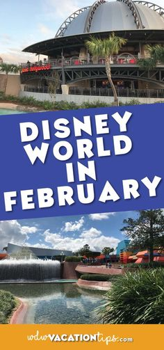 What to expect at Disney World in February. Covering weather, crowds, and what to wear!