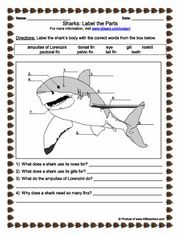 Printables Marine Biology Worksheets the horse ojays and life science on pinterest