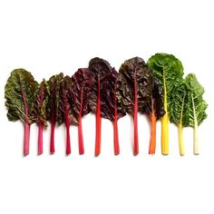 Rainbow chard sorted by color. Food photographer Brittany Wright.