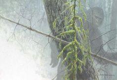 Paul Smith - Robert Bateman - Darrold Smith - Sasquatch Bigfoot Artwork