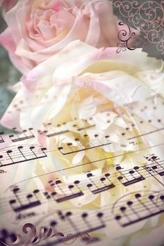 Music sheets are one of my favorite creative item. Music makes the world go round. Love Robin. T.