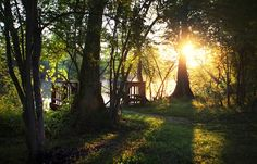Louisiana - Click image to find more Photography Pinterest pins