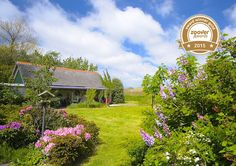 Bed and Breakfast Texel